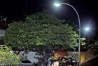 Ensaio fotográfico Teresina: A Cidade da Luz - Imagem 5