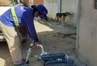 Ampliação e modernização dos sistemas de água e esgoto contarão com mais de R$ 100 milhões em 2021 - Imagem 1