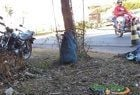Cortador de cana morre após ser colhido por ônibus em União  - Imagem 4