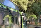 Paralisação dos ônibus em Teresina - Imagem 1