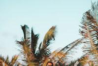 Nay Lima faz ensaio na praia com Diego Araújo