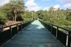 Parque Zoobotânico de Teresina é reaberto após reforma - Imagem 5