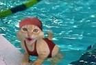 Confira os memes de gatos - Imagem 1