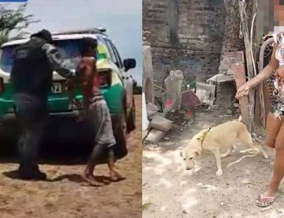 Homem é preso pela PM suspeito de estuprar cadela no Norte do PI