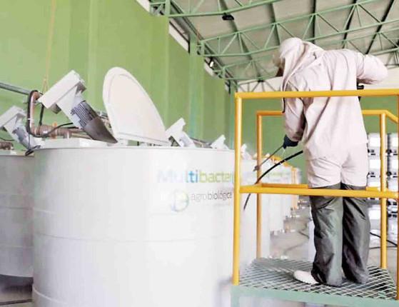 Fazendas dos Cerrados implantam biofábricas contra pragas no Piauí
