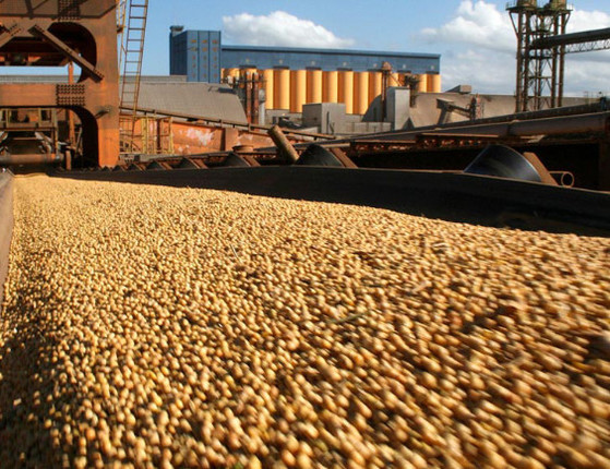 China comprará de 10 a 14 navios de soja no Brasil, diz ARCMercosul