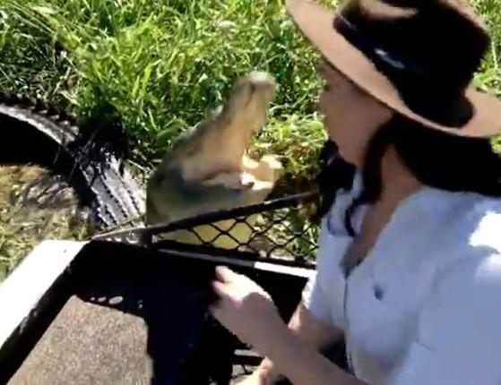 Repórter posa para foto e quase é pega por crocodilo gigante; vídeo