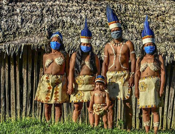 Bolsonaro veta acesso obrigatório a leitos e auxílio para os indígenas