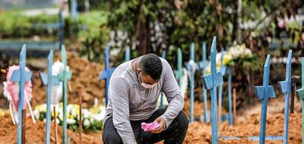 Brasil registra 203 mortes 7.884 novos casos de Covid-19 em 24 horas