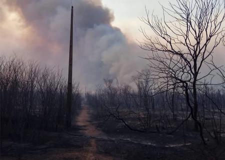 Incêndio de grandes proporções atinge cidades no Sul do Piauí