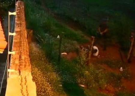 SP: vídeo mostra PMs executando foragido com as mãos na cabeça