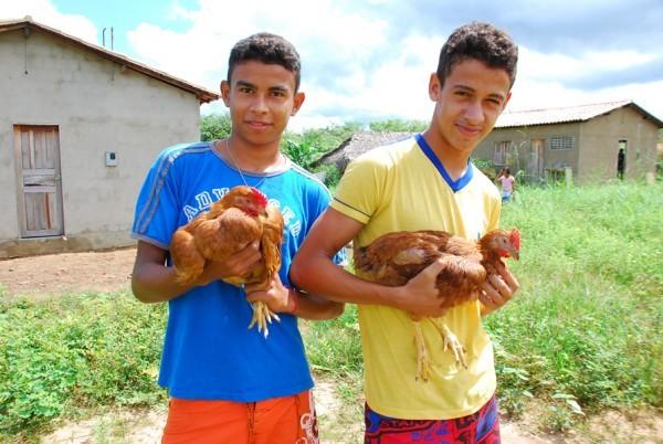 Famílias de assentamento criam galinhas caipiram e vão instalar abatedouro  - Imagem 3