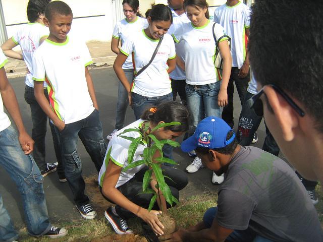 Alunos do Cemti fazem arborização da Avenida Rafael Farias