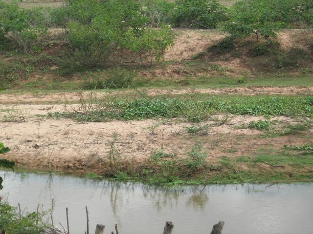Rio Canindé está em estágio avançado de assoreamento