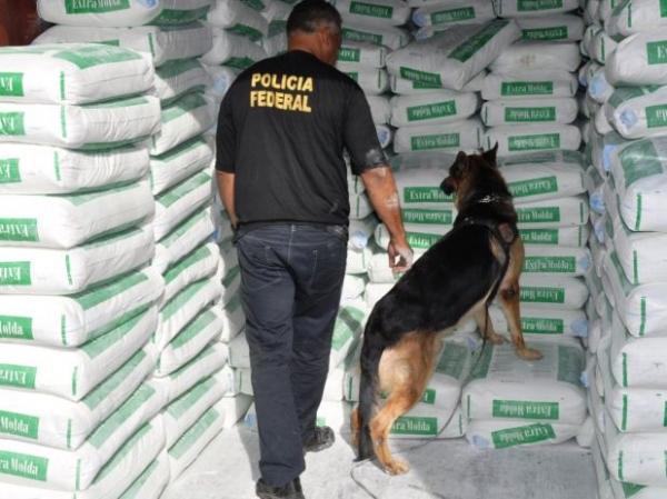 Cão farejador passa mal após ser usado em apreensão de cocaína