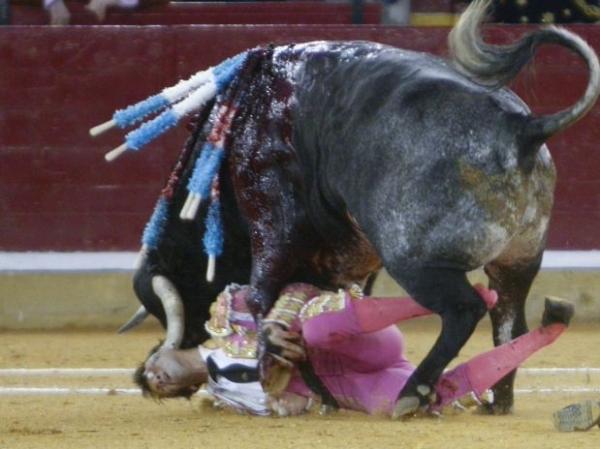Toureiro espanhol pode perder visão de olho atingido por chifrada; imagens fortes!