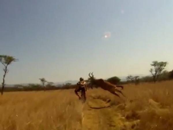 Ciclista é atropelado por antílope na África do Sul