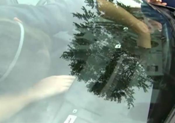 Gato é resgatado após ficar preso dentro de painel de carro