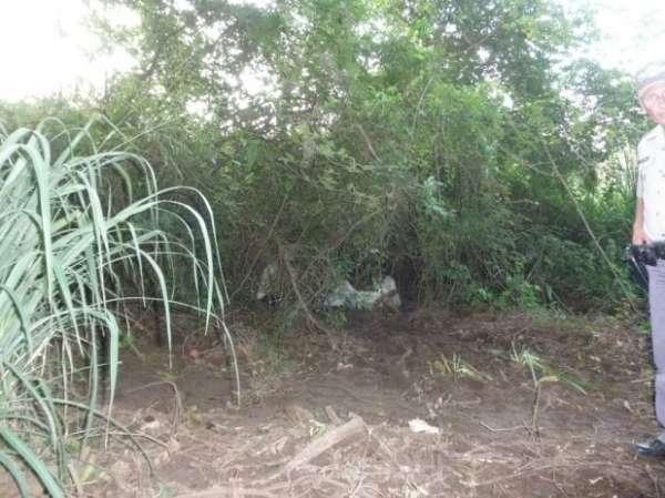 Garoto é estuprado e morto; corpo é encontrado em matagal