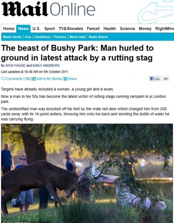 Homem é atacado por veado em parque na Inglaterra
