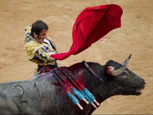 Toureiro atingido no rosto se recupera após cirurgia na Espanha