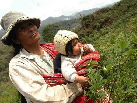 Bolívia é o maior abastecedor de droga na América do Sul, diz ONU