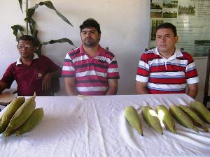 CONAB e Prefeitura fazem aquisição de produtos da Agricultura Familiar