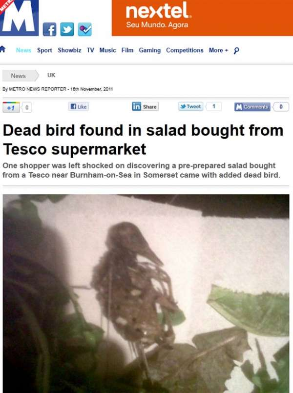 Casal acha pássaro morto em salada pronta de supermercado na Inglaterra
