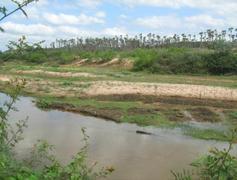 Criança de 10 anos morre nas águas do rio Canindé