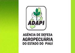 AFTOSA: Piauí em busca da Área Livre com Vacinação