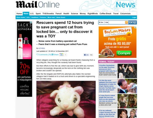 Após 12h, resgate descobre que gata presa em lixeira era de brinquedo