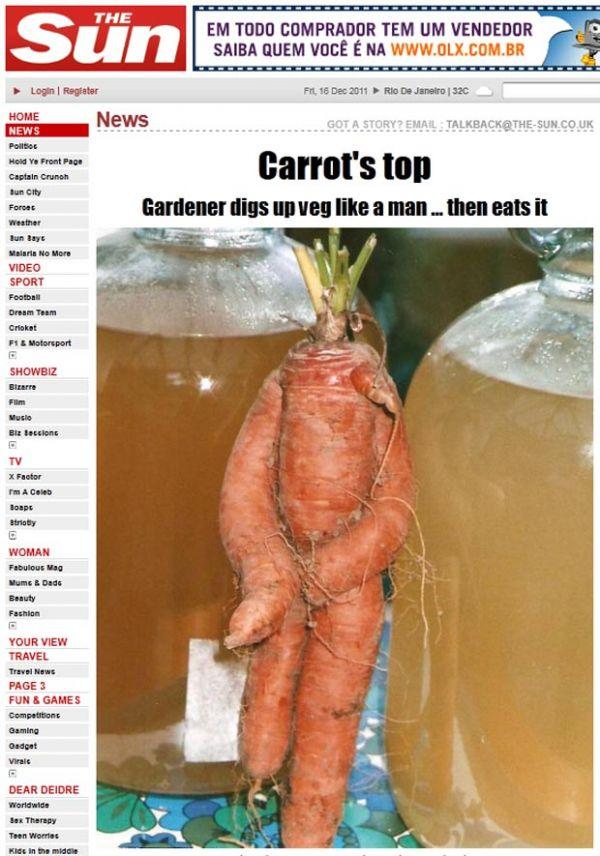 Jardineiro britânico colhe cenoura que se parece com pessoa