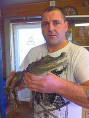 Abandono de crocodilos diante de loja de animais inglesa vira