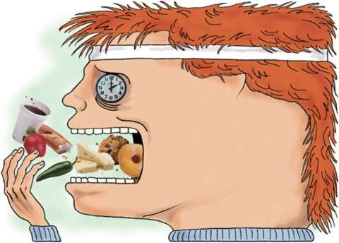 Máquina humana: vc sabe o que acontece no intestino delgado?