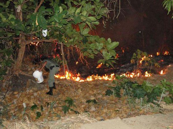 Interior: Queima de fogos termina em incêndio no PI