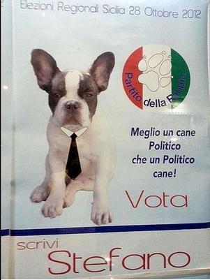 Cidade italiana tem candidato canino à prefeitura