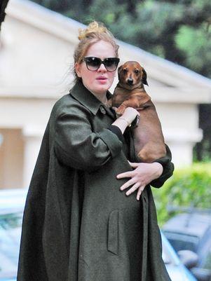 Avessa ao assédio, Adele não quer criar seu filho em Londres