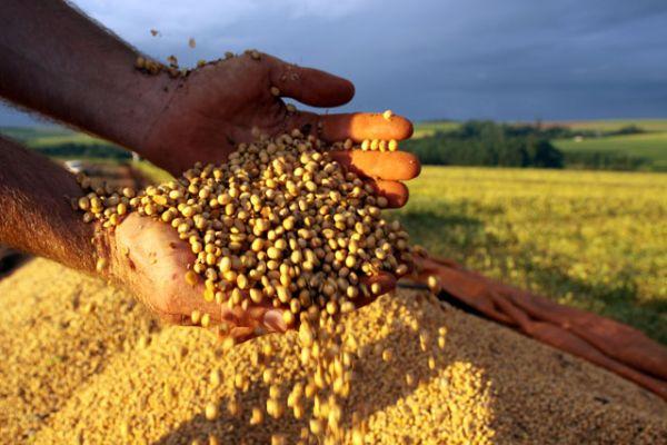 Ano de seca global gera temor de nova crise na produção agrícola