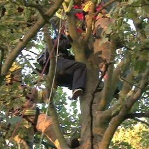 Paraquedista é salvo por árvore em queda de 900 metros