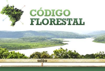 DEM vai recorrer contra novo decreto do Código Florestal