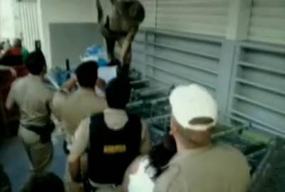 Cobra jiboia é encontrada entre carrinhos de um supermercado