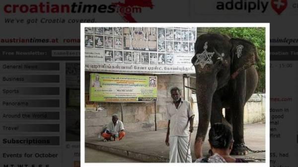 Indiano se ajoelha em frente a elefante para orar e acaba morto pelo animal