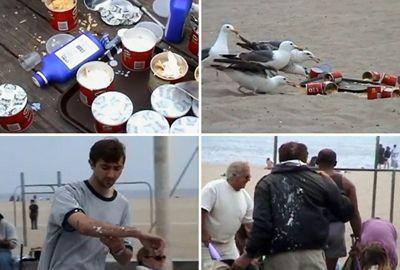 Jovens alimentam gaivotas com laxante em pegadinha