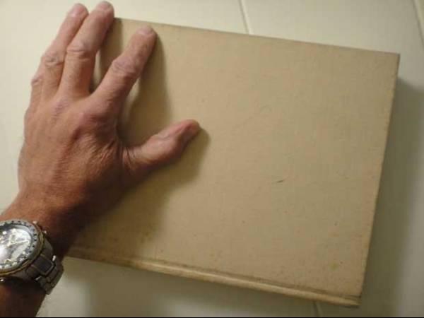 Brasileiro diz ter achado mais de US$ 20 mil em livro nos EUA e busca dono