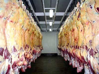 Vaca louca: Irã segue Japão e põe carne brasileira sob suspeita