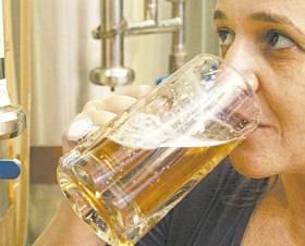 Com moderação, cerveja não engorda e faz bem à saúde, dizem estudos