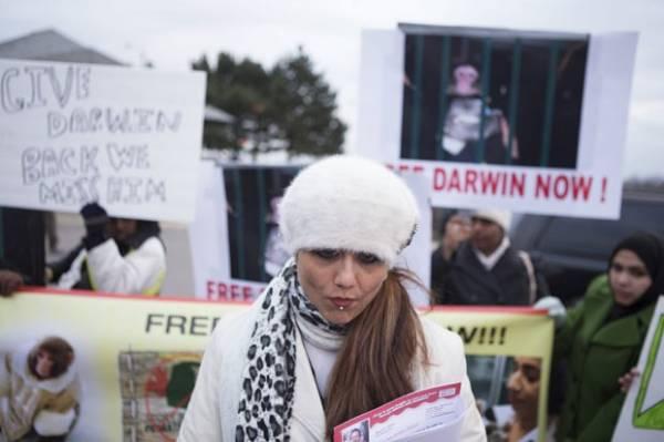 Canadense cria protesto para tentar recuperar