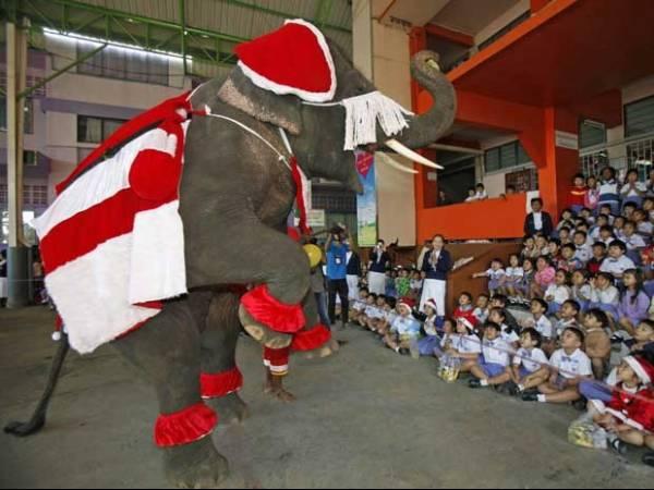 Festival de Natal na Tailândia