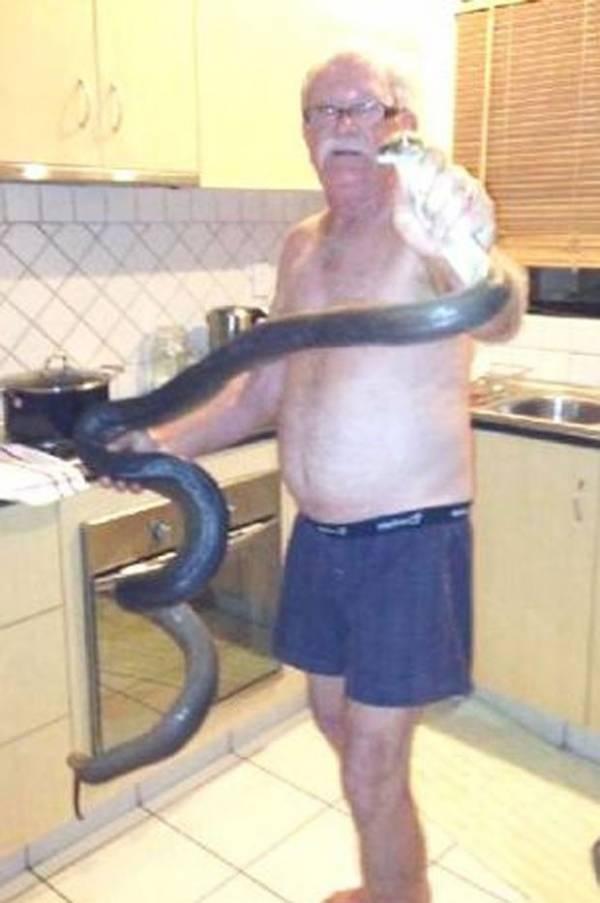 Australiano posa de cueca com cobra de 2 m após capturá-la no armário