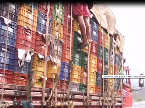 PRF flagra horticultores viajando escondidos sobre carga de verduras